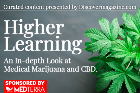 An In-Depth Look at Medical Marijuana and CBD