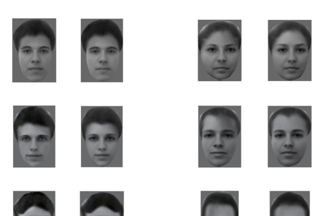 faces-1_custom-e03780e8a0072b2a2ee005fbe44fa1b322cb6cbd-s800-c85.jpg