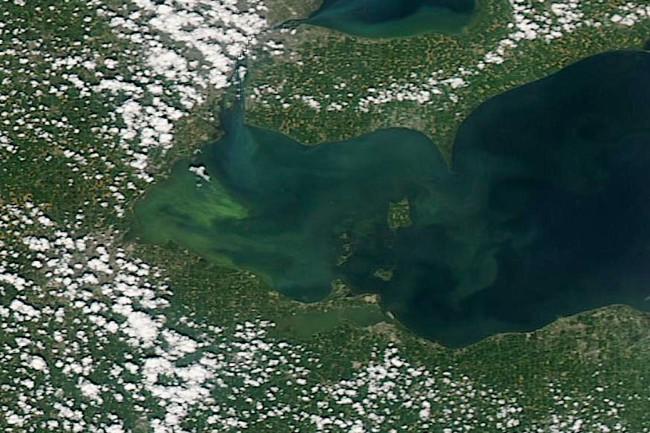 Algae-Lake-Erie.jpg