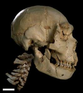 skull, Sima de los Huesos - Javier Trueba/msf