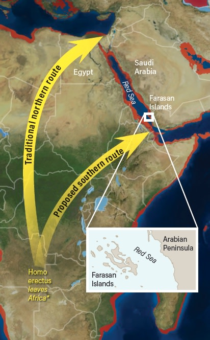 Routes out of Africa - Deep Time Maps/Mackey/Discover