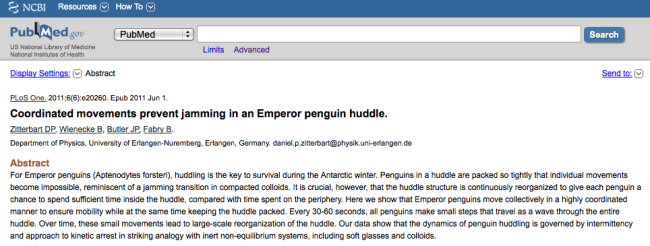 penguin_article.png