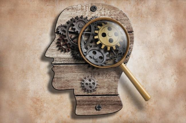 brain gears - shutterstock