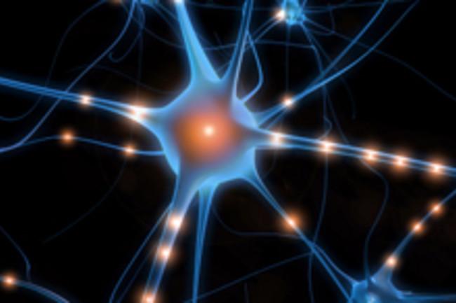 Neuron - iStockphoto