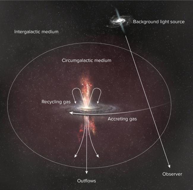 Galactic-Gas