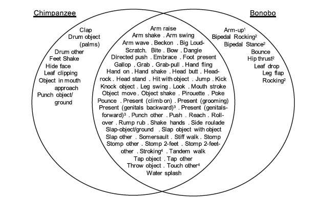 Venn diagram of gestures observed in common chimpanzees and bonobos (credit: Graham et al; Animal Cognition 2017, volume 20)