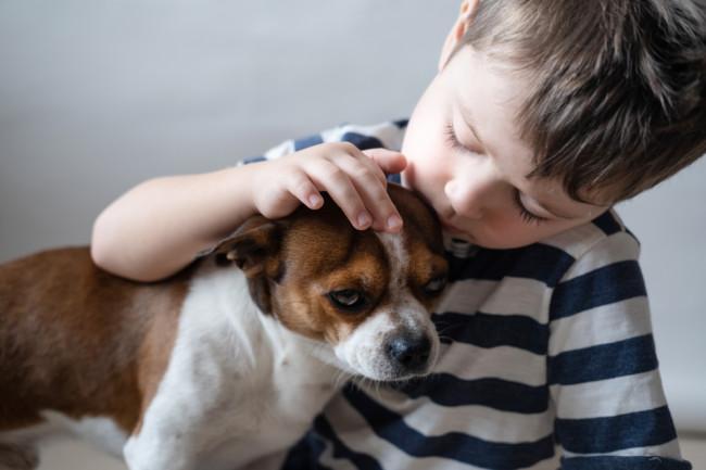boy child petting a small dog - shutterstock
