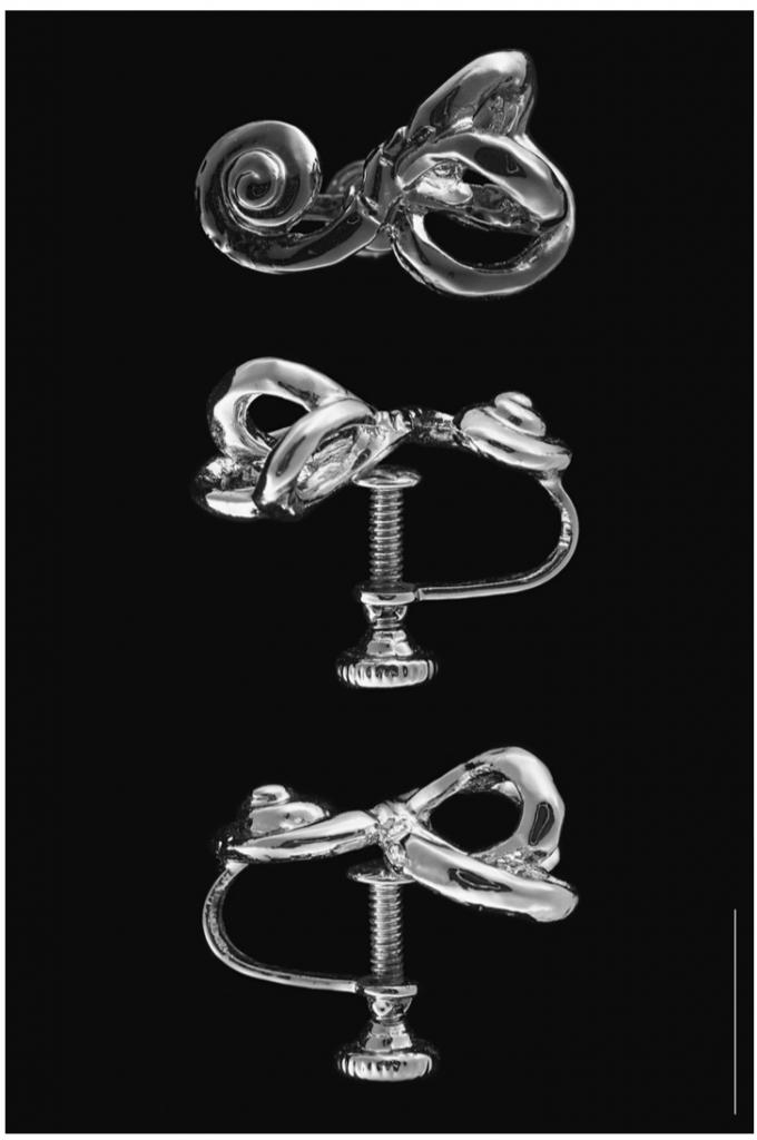 ear-jewelry-680x1024.png