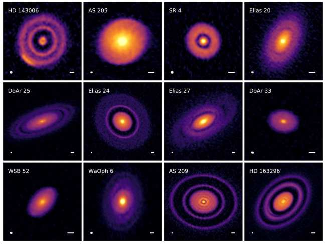 A survey of newborn stars using the ALMA Observatory shows them surrounded by huge pancakes of material, called protoplanetary disks, where planets are being born. (Credit; Andrea Isella/DSHARP/ALMA)