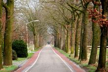 holland-road220.jpg