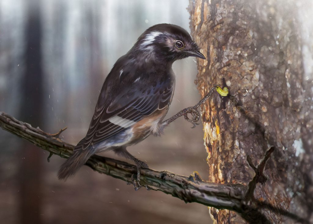 This-is-a-reconstruction-of-Elektorornis-chenguangi-showing-the-possible-probing-function-of-the-elongate-toe.-Elektorornis-was-smaller-than-a-modern-sparrow.-CREDIT-Zhongda-Zhang-1024x732