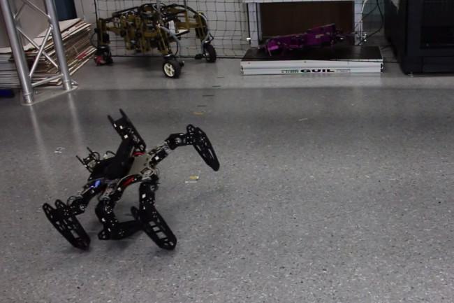 injured-bot.jpg