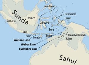 661px-Map_of_Sunda_and_Sahul