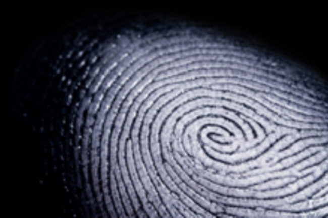 Fingerprints Tell Everything About You
