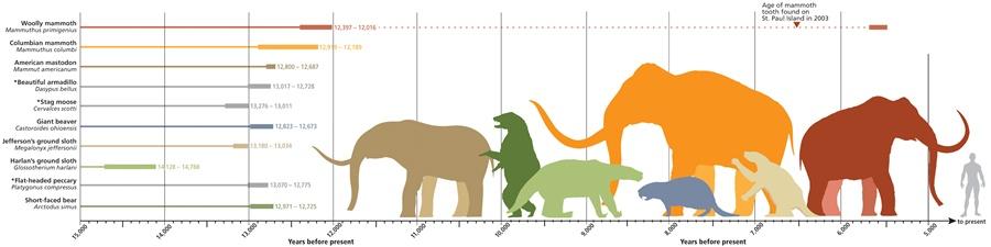 Extinct animal chart
