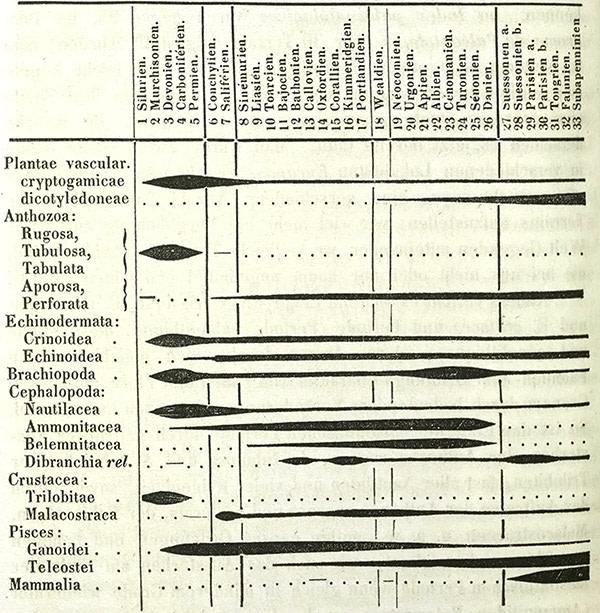 Bronn's graph-Fig-3