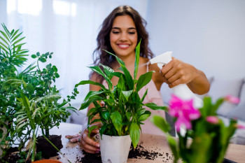 The Budding Plant Parent's Guide to Fixing Common Houseplant Problems
