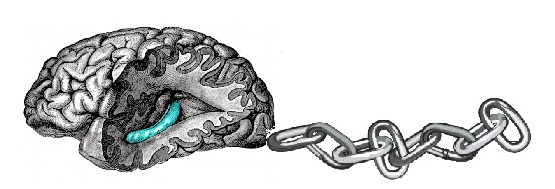 linked_brain.png