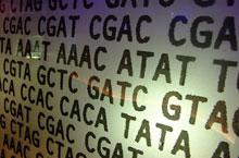 genetic-code.jpg