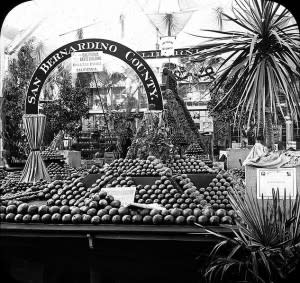 633px-Worlds_Columbian_Exposition-_Horticultural_Building_Chicago_United_States_1893.-300x283.jpg