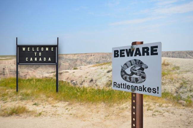 beware_rattlesnakes-1024x678.jpg
