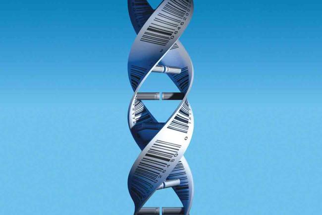 DNA - Science Source - DSC-BI0516_01.jpg