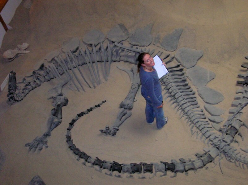 P-maidment-and-stegosaurus 0