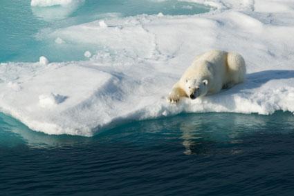arctic-warming.jpg