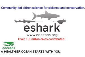 eShark
