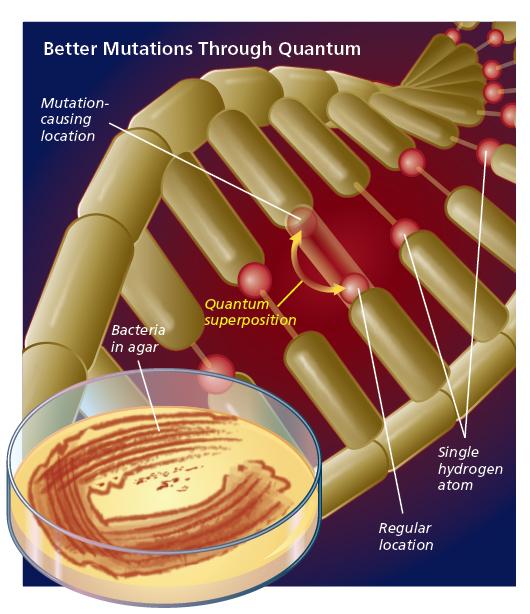 better-mutations