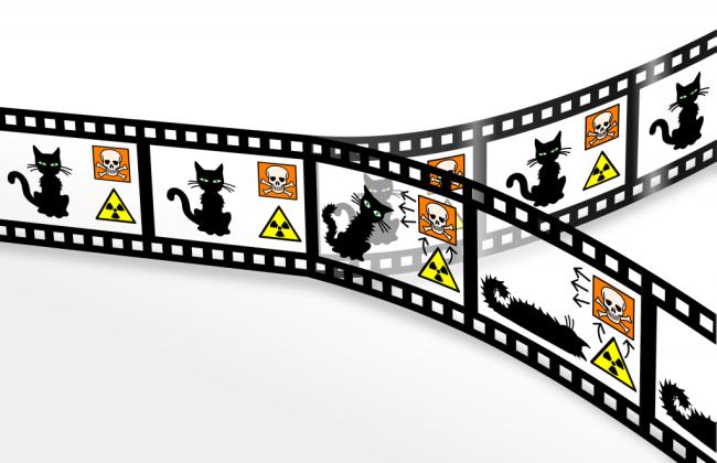 Schrödinger's Cat - Christian Schrim