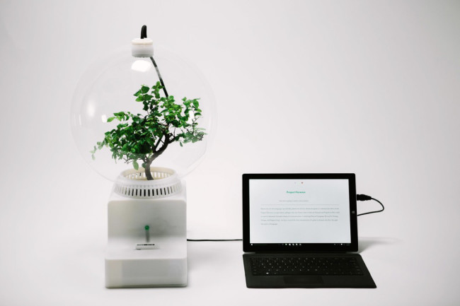 3060347-inline-s-1-microsoft-teaches-plants-to-talk-with-project-florence-1024x683.jpg