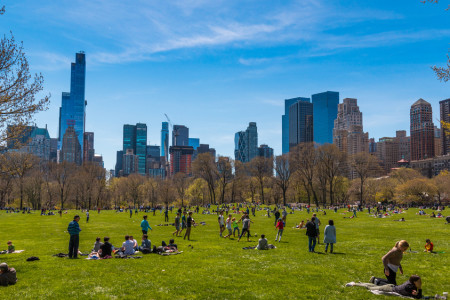 Green Spaces Are a Necessity, Not an Amenity. How Can Cities Make Them Accessible to Everyone?