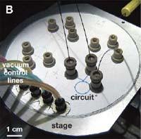Microfluidics.jpg