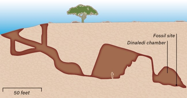 fossilsite sima