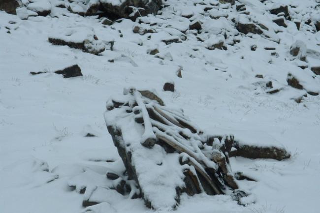 Roopkund human bones - Pramod Joglekar