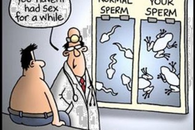 sperm-cartoon