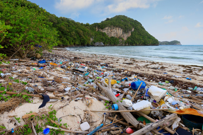 Plastic trash on the shore