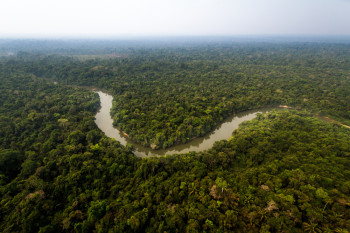 The Amazon Rainforest Could Die in Your Lifetime — Here's Why