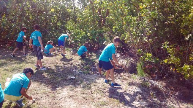 Mangrove Restoration - EarthEcho International