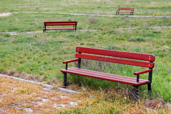 Empty Vacant Benches Park - Shutterstock