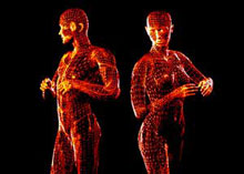 symmetrical-bodies.jpg