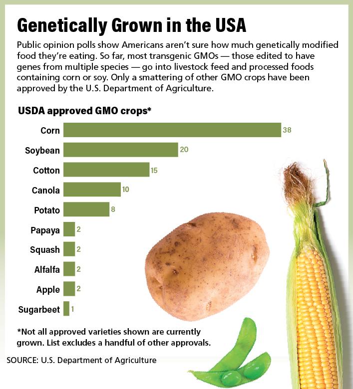 US-GMOs