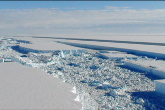 wilkins-ice-shelf.jpg