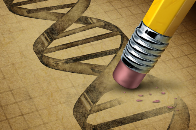 DNA_edits.jpg