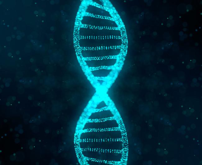 Genes DNA - Shutterstock