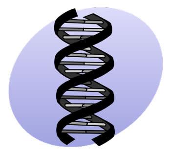 genetics.jpg