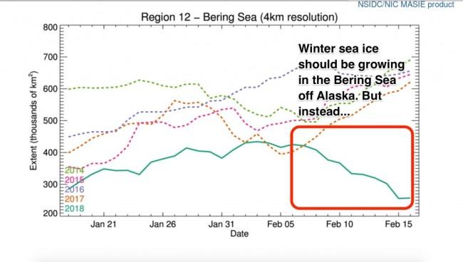 r12_Bering_Sea_ts_4km_png_1_200×600_pixels-2-1024x580.jpg