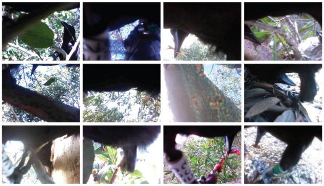 Screen-Shot-2015-12-28-at-2.15.53-PM.png