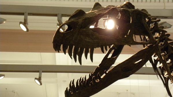 Terminatorsaurus.jpg